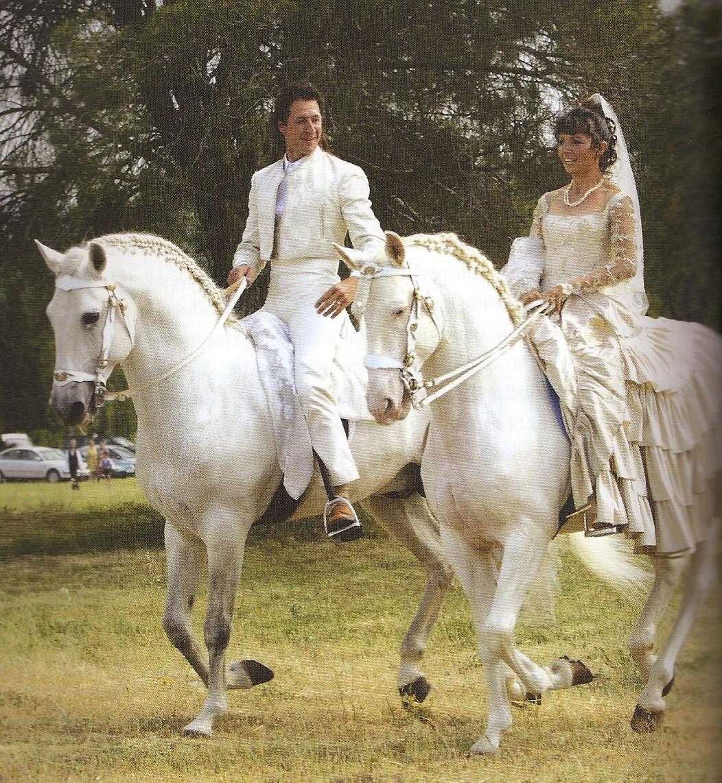 Horseshoe dating