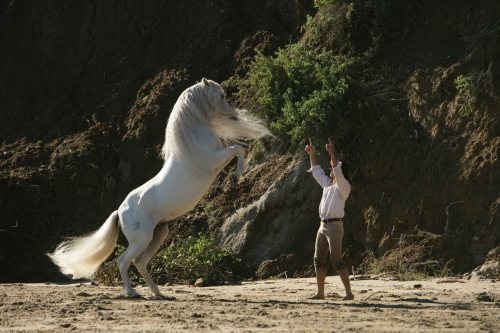 "Frederic and his famous stallion Templado ""at play."""