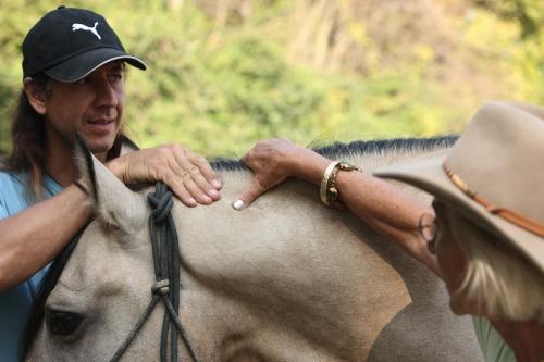 Frederic Pignon and Linda Tellington-Jones apply TTouches to one of Frederic's horses.