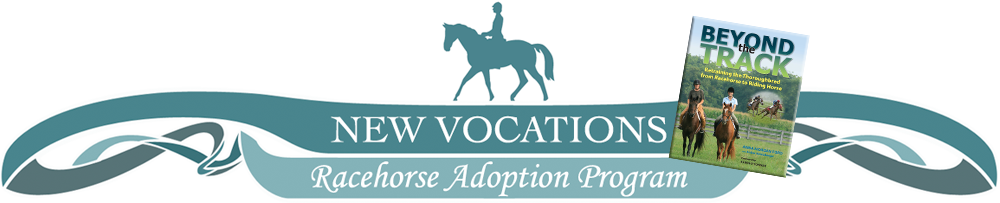 """New Vocations Racehorse Adoption has a new """"champion""""! Metro Meteor, the Painting Racehorse, will be on the TODAY SHOW April 4, 2013. Tune in and check it out!"""