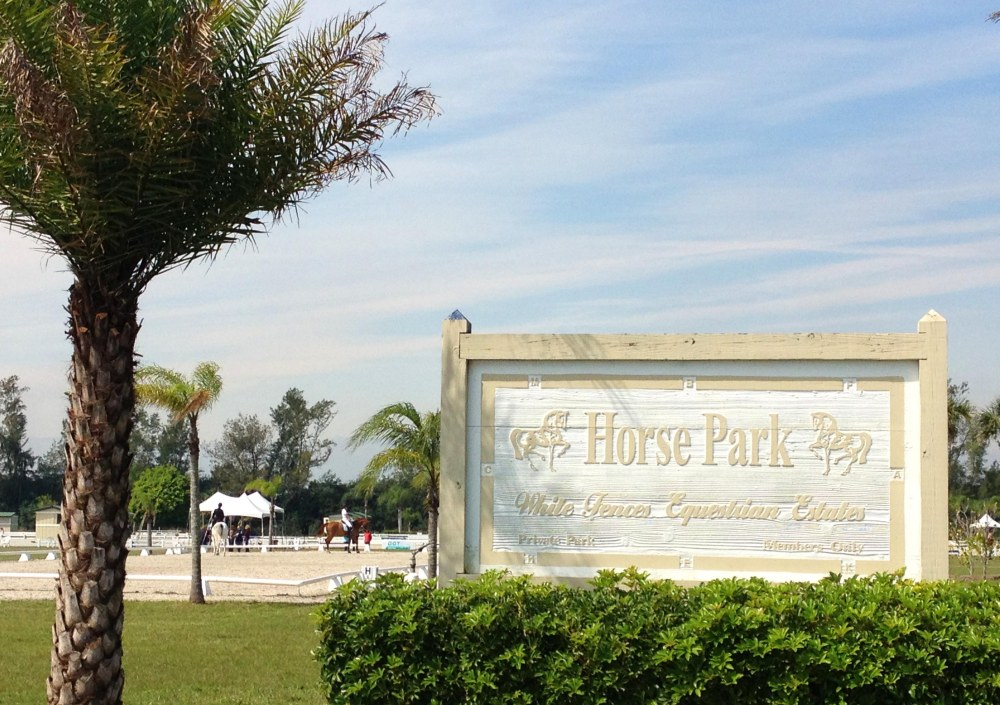 TSB spent much of its day at the Palm Beach Dressage Derby.