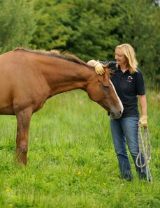Vanessa Bee, founder of the International Horse Agility Club, spent the weekend at the Buck Brannaman clinic in Colorado.