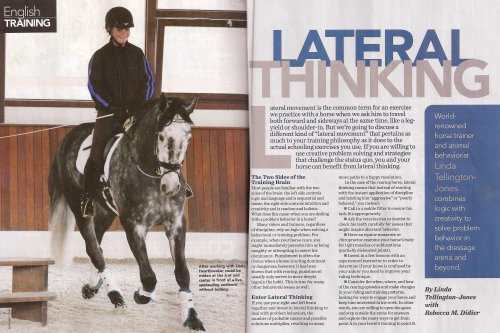 Pick up a copy of Horse Illustrated's July issue to read this article by Linda Tellingon-Jones!