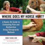Where-Horse-Hurt-200