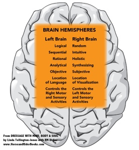 Basic left-brain and right-brain tendencies--a quick reference.
