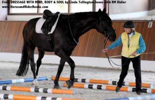 Linda Tellington-Jones developed her world-renowned Tellington Method in ways that engage both sides of the horse's brain in order to improve learning ability and performance. Find out how the Tellington Method can do the same thing for your own learning ability and performance in DRESSAGE WITH MIND, BODY & SOUL.