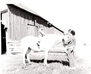 "A three-year-old Susan on the first ""horse"" she remembers riding--she remembers him being a lot bigger!"