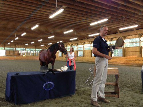 Schleese demonstrates the difference in various saddle trees and their impact on horse and rider.