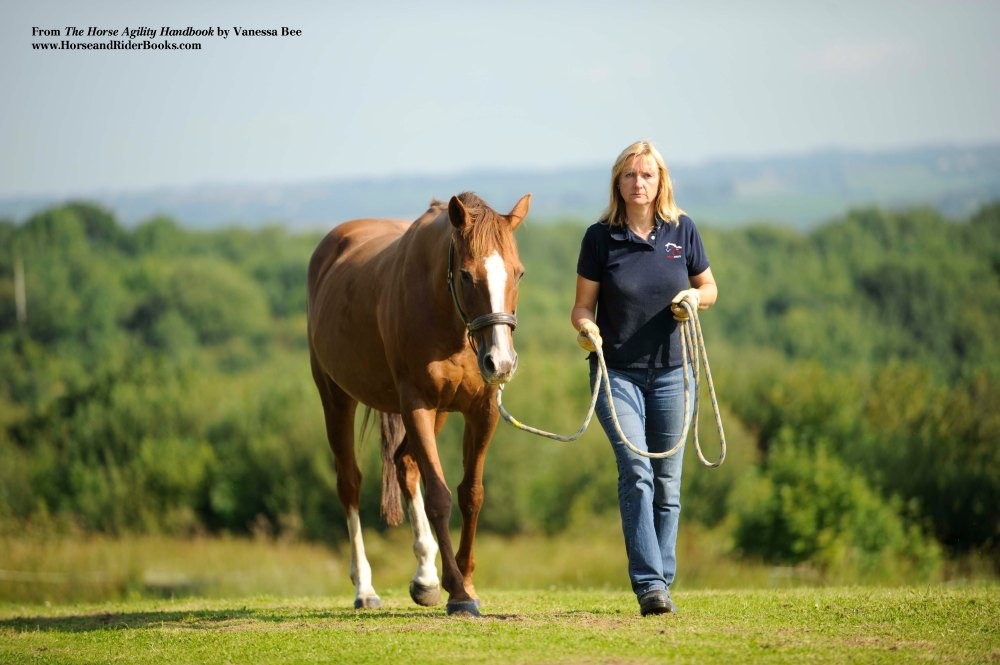 """I can lead my horse Secret with a loose lead rope—she """"reads"""" me for direction rather than relying on a tug of the lead rope."""