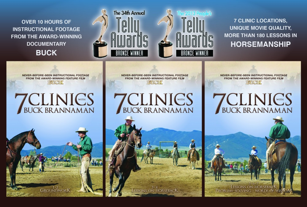 7 CLINICS WITH BUCK BRANNAMAN is the winner of two Telly Awards! Click the image above to find out more about these excellent instructional DVDs.
