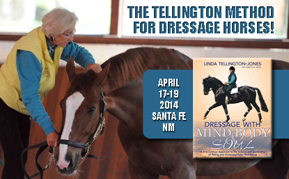 Click image for more information about the Tellington Method for Dressage Horses clinic in Santa Fe, New Mexico.