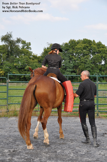 You can practice using your horse's hind end with the help of a friend and a martial arts training shield.