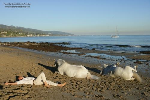 Federic, Templado, and Fasto take a break in Malibu.