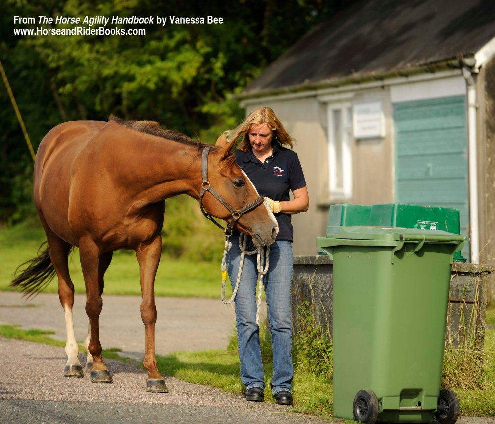 """When """"stretching"""" a horse's comfort zone, introduce new or scary objects gradually."""