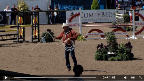 Click image to watch Buck Brannaman at the Dublin Horse Show.