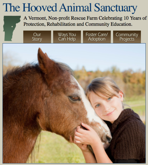 TSB joins The Homes for Horses Coalition in helping a local equine rescue on Make A Difference Day.
