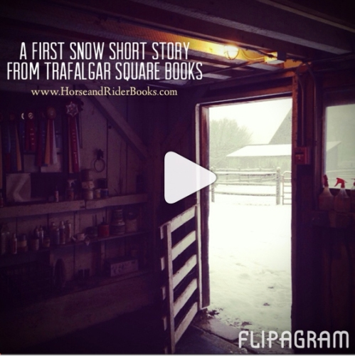 Click the image above to watch our First Snow Short Story.