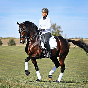 Grand Prix dressage rider Yvonne Barteau and GP Raymeister.