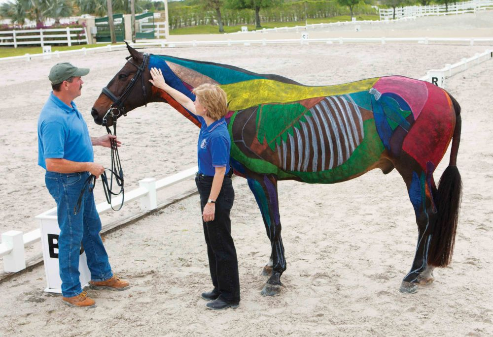 Coralie Hughes and Jim Masterson discussing the painted horse from their new book THE DRESSAGE HORSE OPTIMIZED.