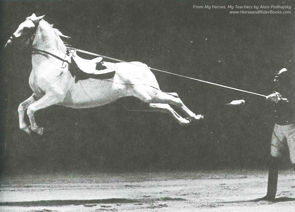 """The """"Flying Horse"""": Neapolitano Santuzza in a capriole in hand."""