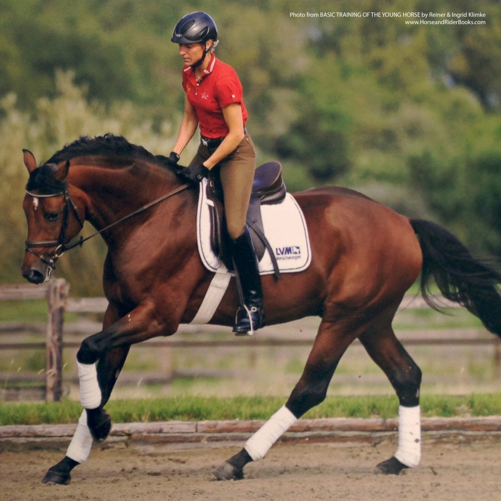 Many horses prefer loosening up at the canter.