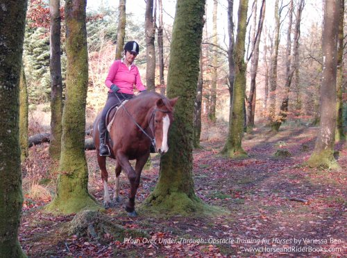 Vanessa Bee's new book OVER, UNDER, THROUGH will help you and your horse enjoy many safe autumn rides together.
