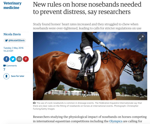 Last week, The Guardian released the findings of a new study that finds horses are stressed by tight nosebands.