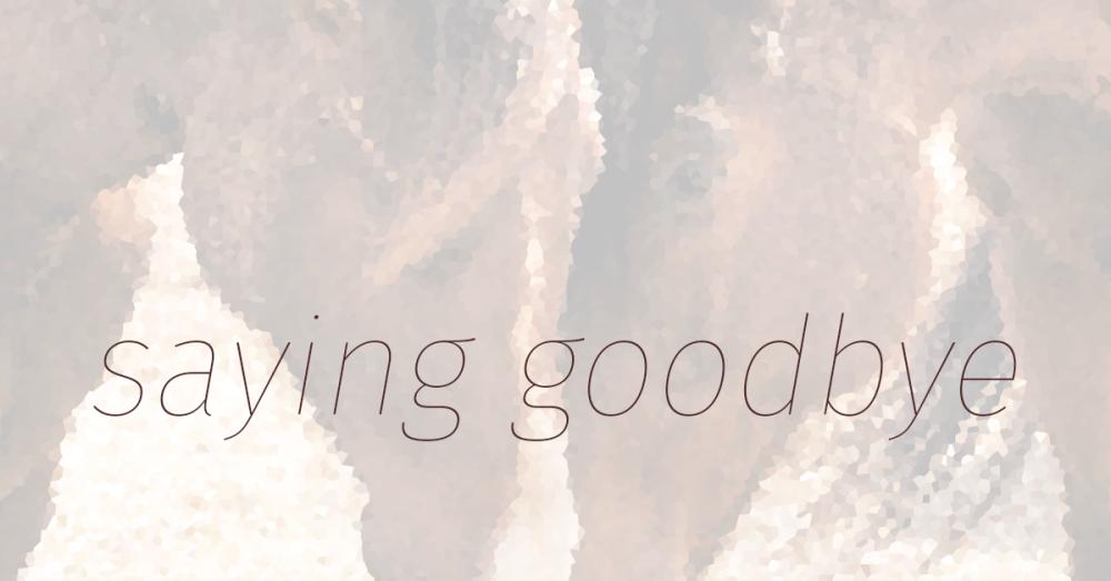 GoodbyeFB