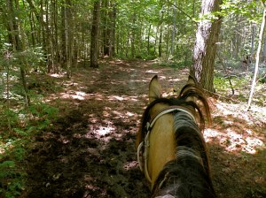Willow and Jean both enjoy the beautiful trails at SAT.