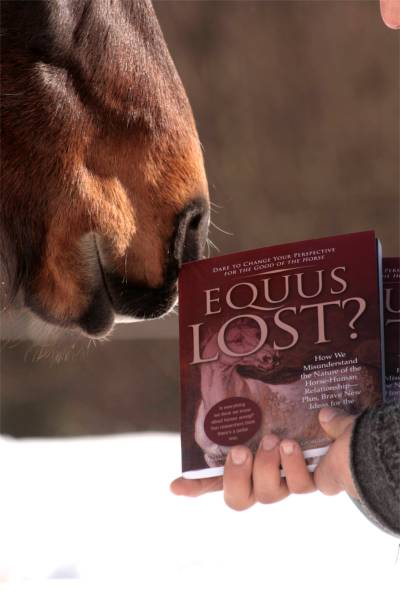 introducing-equus-lost_04