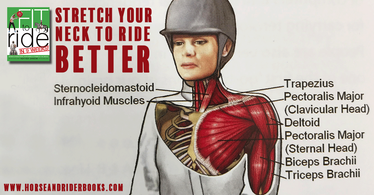 Stretch Your Neck To Ride Better Trafalgar Square Books Blog