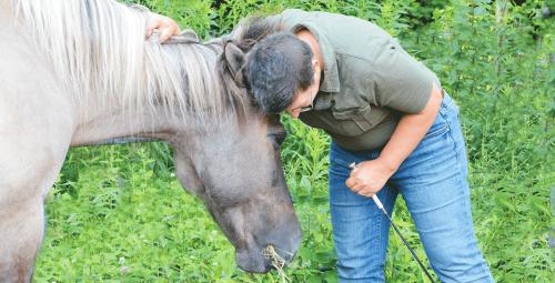 HorseSpeakSharonFB