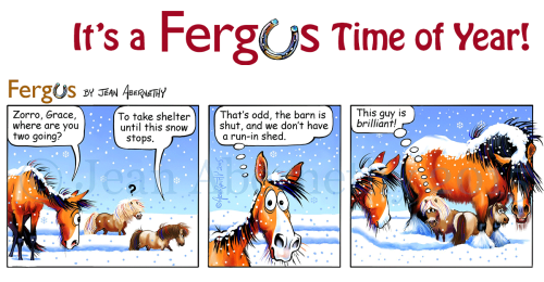 Fergus-Time-FB