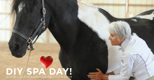 DIY-SPA-DAY-horseandriderbooks