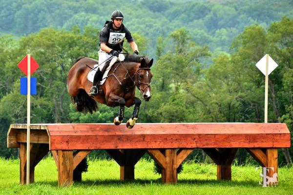 TikMaynard-horseandriderbooks