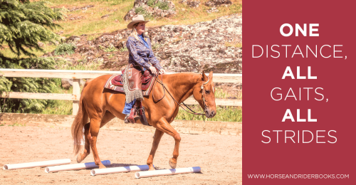 DressageCowboyWay-horseandriderbooks