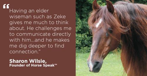 HorseSpeakZeke-horseandriderbooks