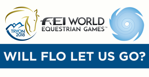 WEGFLO-horseandriderbooks