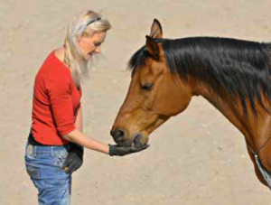HandyBookHorseTricks3-horseandriderbooks