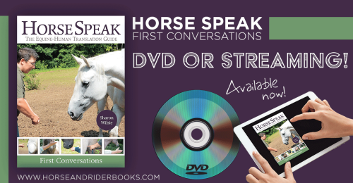 HorseSpeakDVDStream-horseandriderbooks