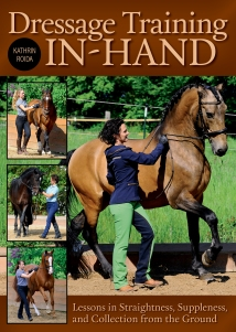 Dressage Training In-Hand