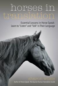 Horses in Translation