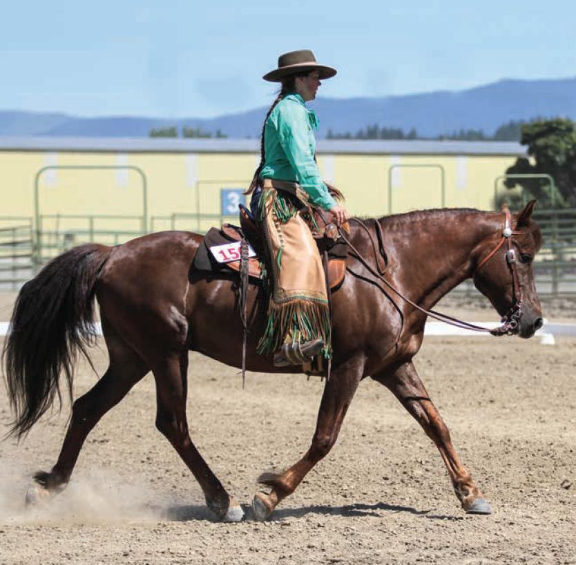 JenniGrimmett3-horseandriderbooks