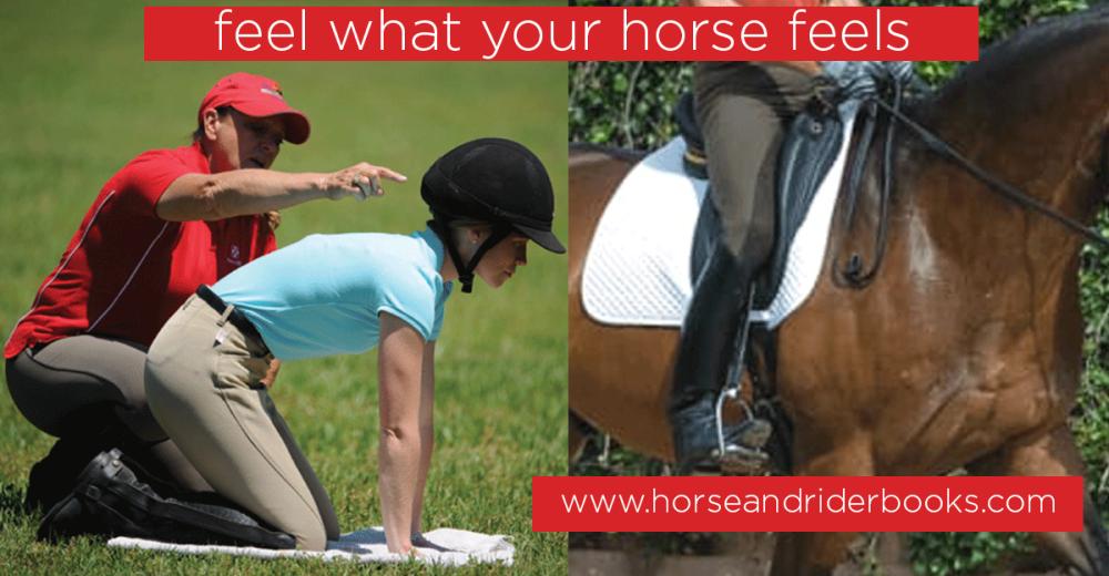 ridersguiderealcollection-horseandriderbooks