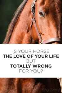 KnowBetterDoBetterPIN-horseandriderbooks