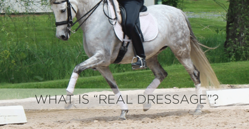 DressageforNoCountry-horseandriderbooks
