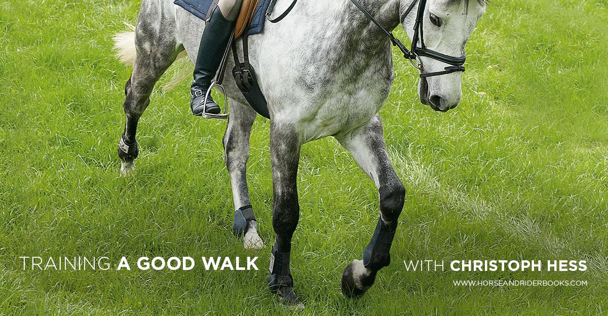 TrainingaGoodWalk-horseandriderbooks
