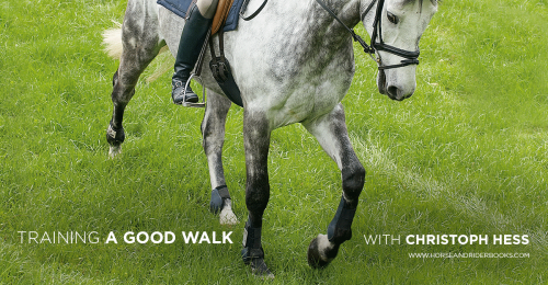 TrainingaGoodWalk-horseandriderbooks