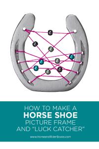 Horse Shoe Luck Catcher