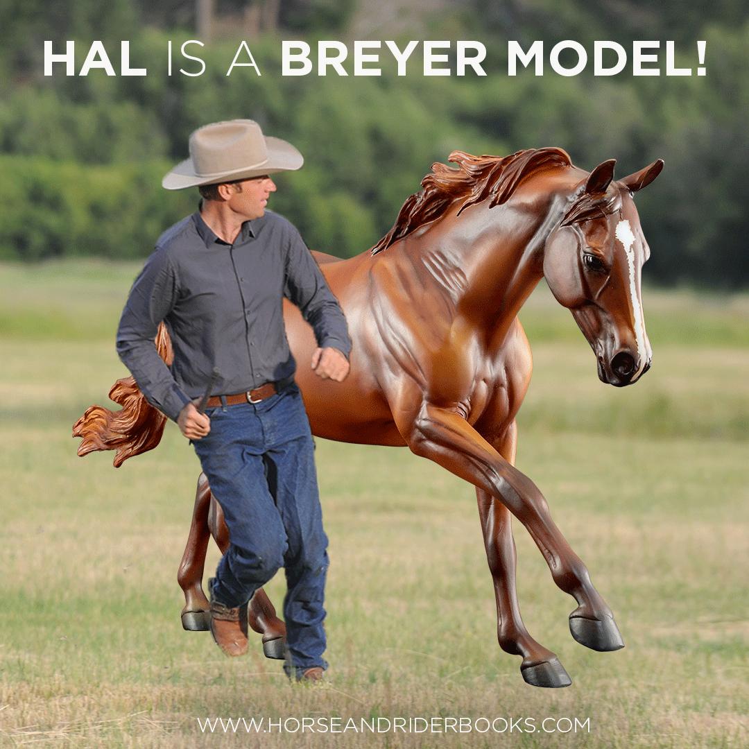 HalBreyerModelInsta-horseandriderbooks